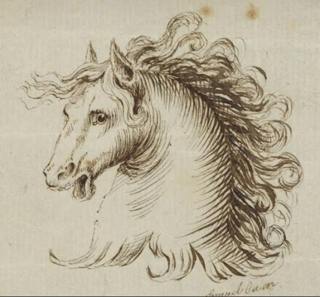 Samuel H Owen--Head of a Horse